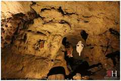 Meramec_Caverns_Saint_Louis_Missouri