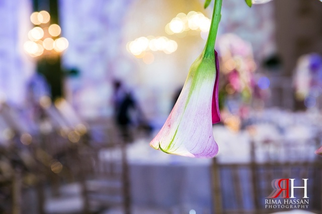 Hyatt_Regency_Wedding_Female_Photographer_Dubai_UAE_Rima_Hassan_kosha_decoration_stage_dream_services_flower