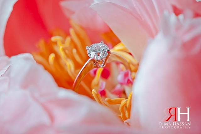 Palazzo_Versace_Wedding_Female_Photographer_Dubai_UAE_Rima_Hassan_bride_jewelry_ring_band